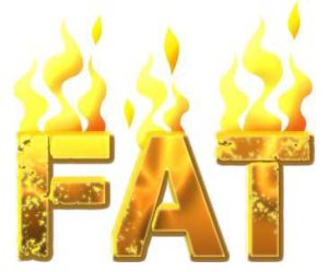 fat burning drug